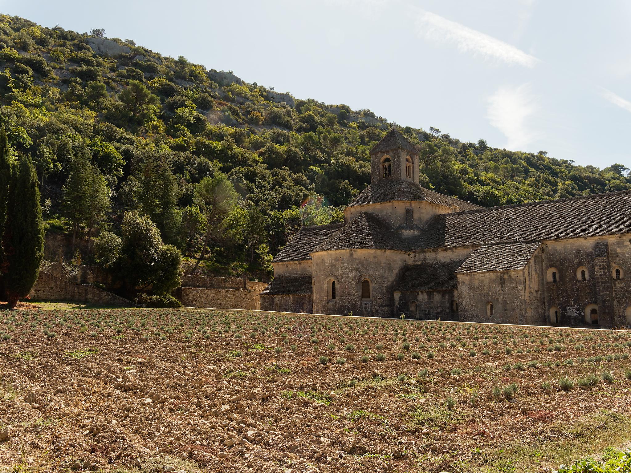 1 Octobre – Abbaye de Sénanque