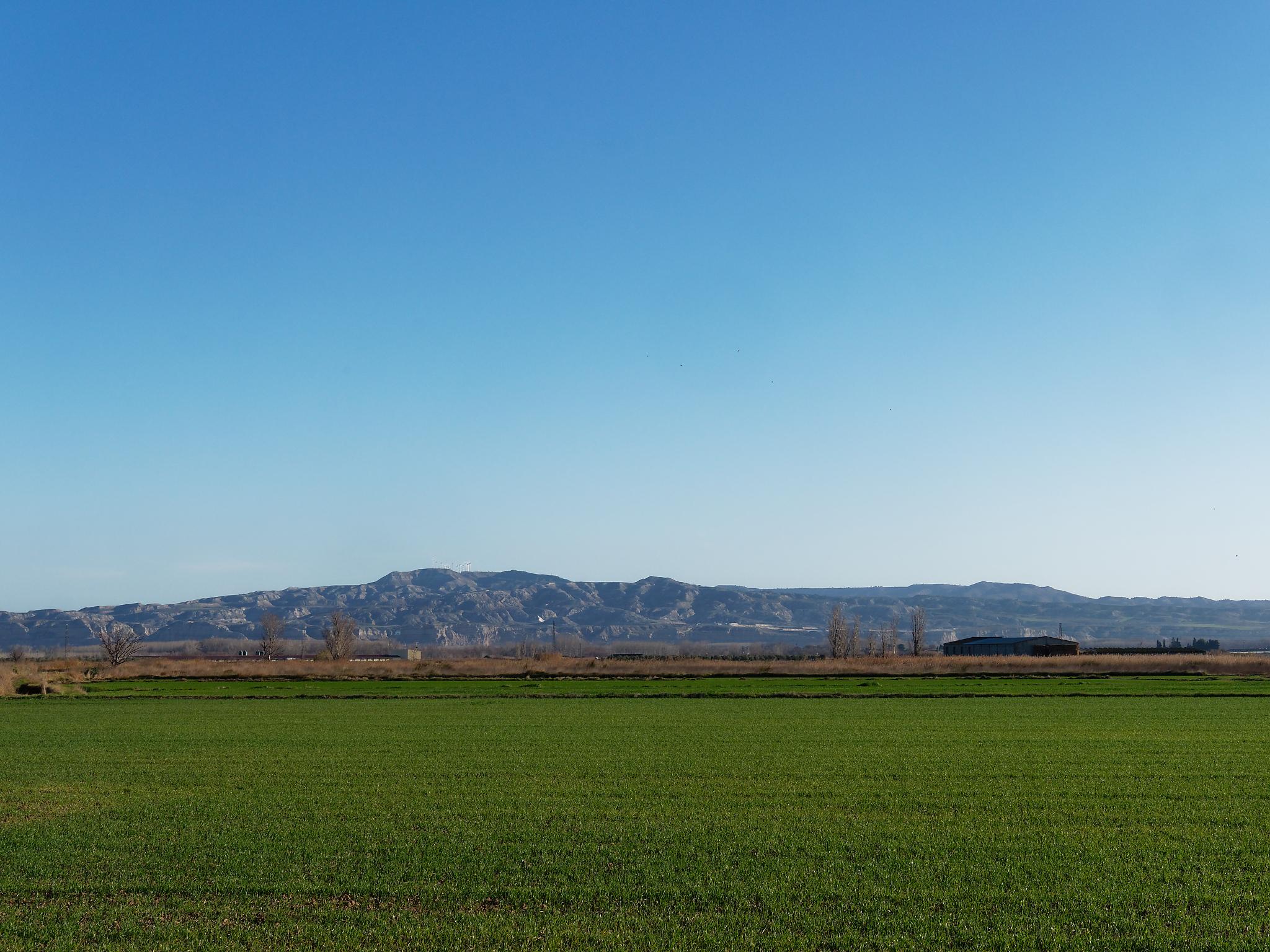 05 Février / Saragosse – Burgos